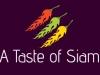A Taste of Siam
