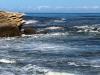 Merri Marine Sanctuary